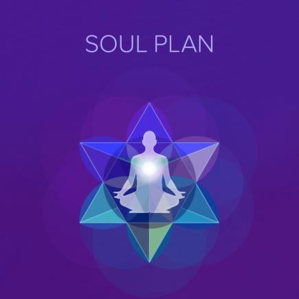 Bella Luna: Soul Plan Practitioner